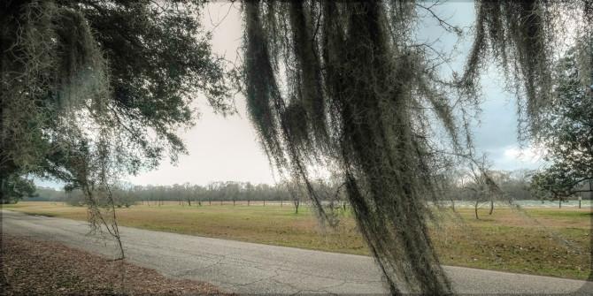 Georgia County USA © Bernd Wonde